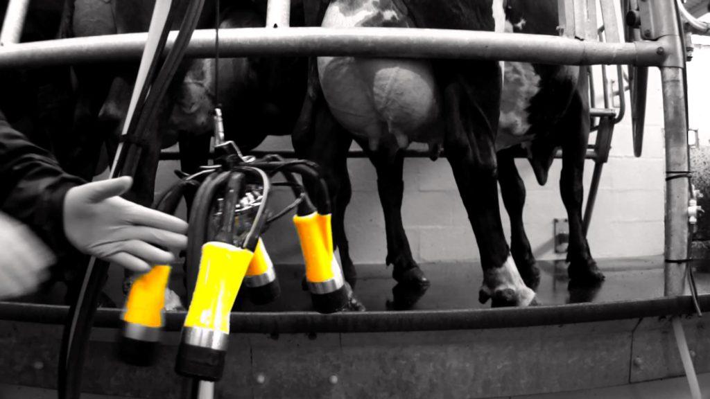 ADF Milking System Blackburn Lancashire